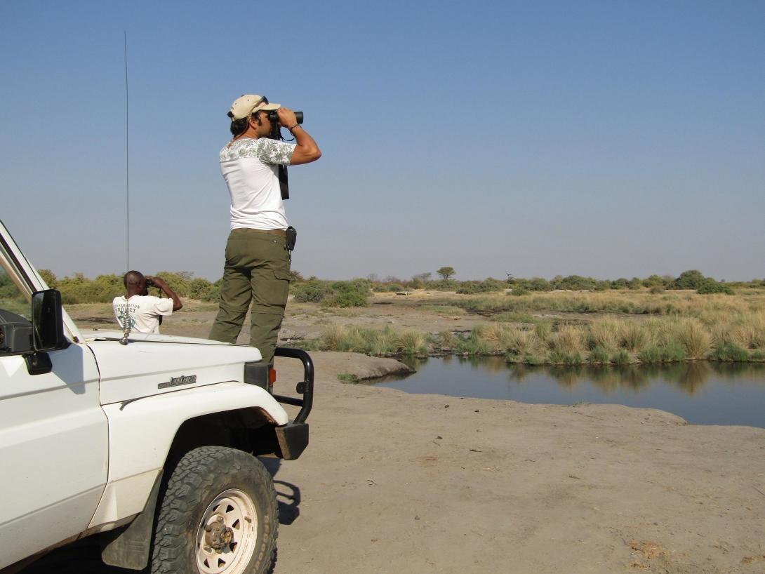Volunteers monitor wildlife at Wild at Tuli Reserve in Botswana